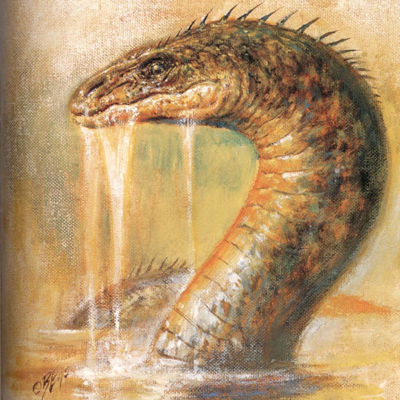 Péist - the water-beast of Irish and Scottish mythology