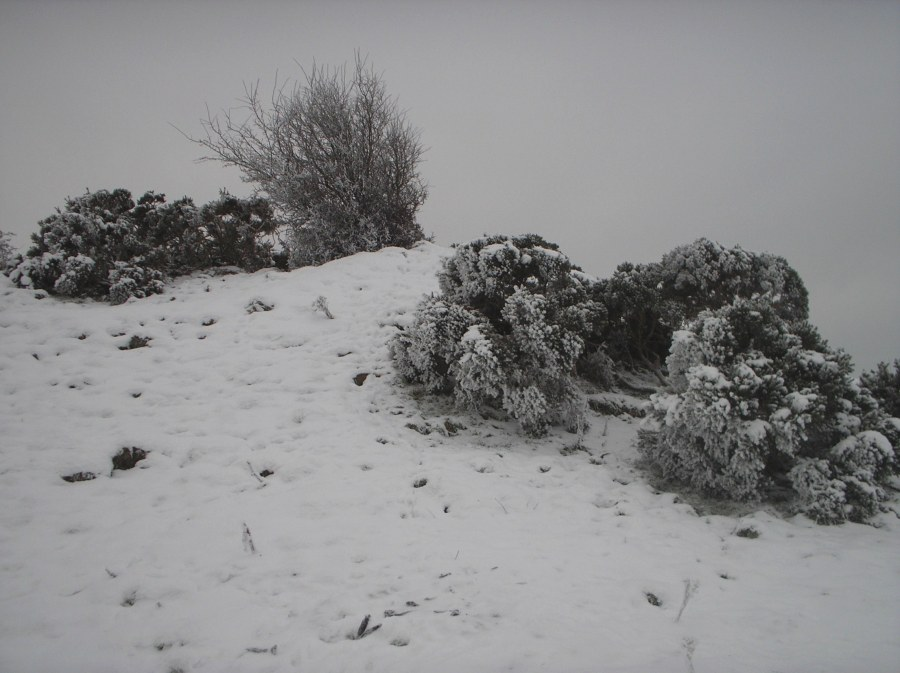 The cairn on Sheebeg in the snow